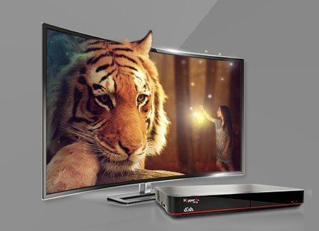 The Leader in HD TV - Pineville, Louisiana - Universal Satellite Sales And Service - DISH Authorized Retailer